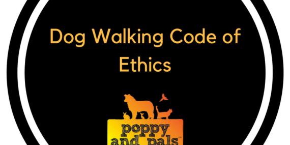 Dogwalkingcodeofethics